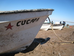 cucapacooperativeboat_1