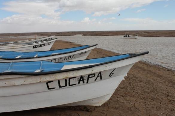 pesca_cucapa-3